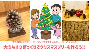まつぼっくりでクリスマスツリーを作ろう