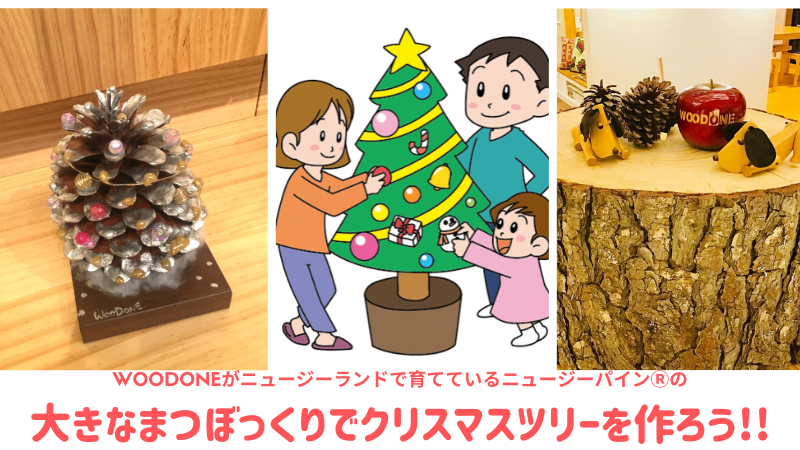 大きなまつぼっくりを使って、クリスマスツリーを作ろう!!